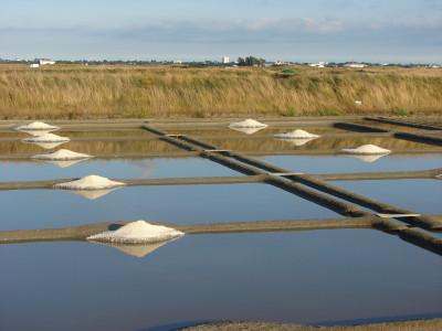 les marais salants de la presqu'île de Guérande à 20 minutes de Parcofolies