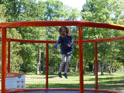 trampoline rond parcofolies